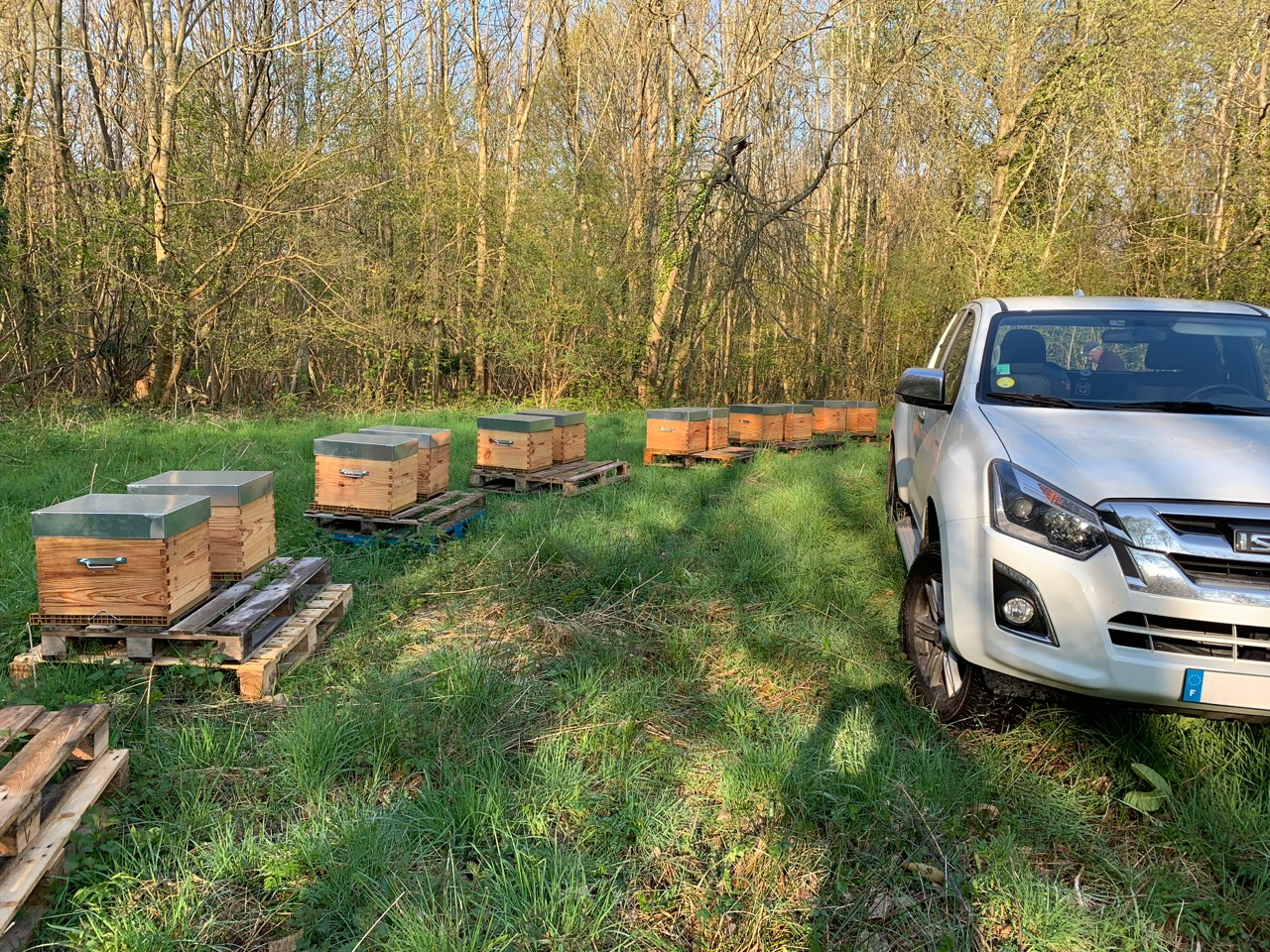 Les Ruchers d'Alexandre, apiculteur dans les Yvelines et le Val d'Oise