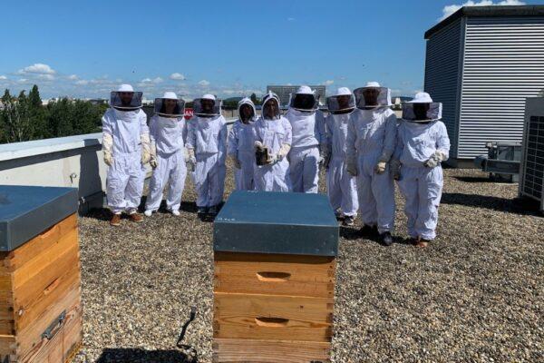 Les Ruchers d'Alexandre, location de ruches pour les entreprises et collectivités